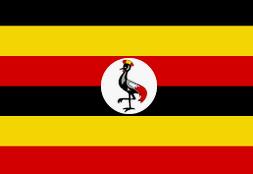 best forex broker in uganda
